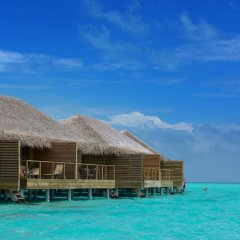 Отель Cocoon Maldives пляж