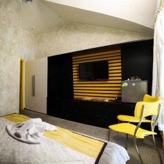Мини-отель Краски 3* Номер Комфорт с разными типами кроватей фото 2