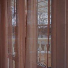 Гостиница Вилла Татьяна на Верхнеозёрной Номер Комфорт с различными типами кроватей