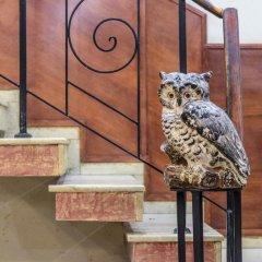 Отель Art Hotel Болгария, Варна - отзывы, цены и фото номеров - забронировать отель Art Hotel онлайн с домашними животными