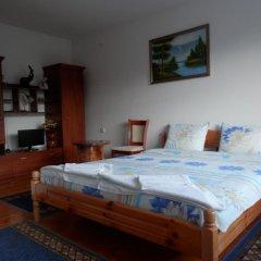 Отель Milka House Чепеларе комната для гостей фото 4