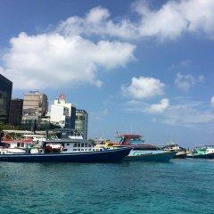 Отель Pine Lodge Мальдивы, Мале - отзывы, цены и фото номеров - забронировать отель Pine Lodge онлайн приотельная территория фото 2