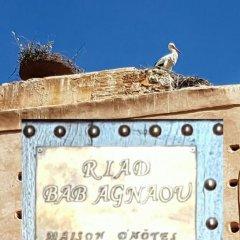 Отель Riad Bab Agnaou Марокко, Марракеш - отзывы, цены и фото номеров - забронировать отель Riad Bab Agnaou онлайн фото 8