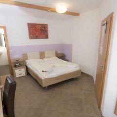 Отель Haus Romeo Alpine Gay Resort - Men 18+ Only 3* Стандартный номер с различными типами кроватей фото 10