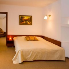 Гостиница Troyanda Karpat 3* Люкс разные типы кроватей фото 11