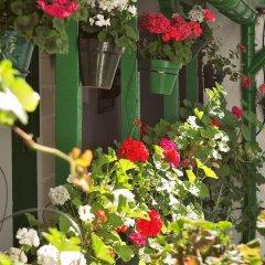 Отель Apartamentos Jerez Испания, Херес-де-ла-Фронтера - отзывы, цены и фото номеров - забронировать отель Apartamentos Jerez онлайн фото 11