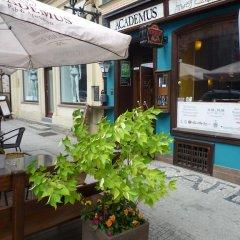 Отель Academus Cafe Pub & Guest House Вроцлав