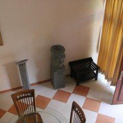 Отель Bentota Village Шри-Ланка, Бентота - отзывы, цены и фото номеров - забронировать отель Bentota Village онлайн удобства в номере фото 2