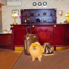 Гостиница Александер Платц с домашними животными