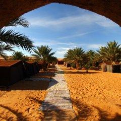 Отель Auberge Sahara Garden Марокко, Мерзуга - отзывы, цены и фото номеров - забронировать отель Auberge Sahara Garden онлайн фото 4