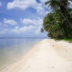 Отель Pacific Treelodge Resort Федеративные Штаты Микронезии, Косраэ - отзывы, цены и фото номеров - забронировать отель Pacific Treelodge Resort онлайн пляж