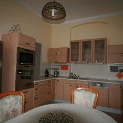 Отель Apartmany U Thermalu Чехия, Карловы Вары - отзывы, цены и фото номеров - забронировать отель Apartmany U Thermalu онлайн в номере фото 2
