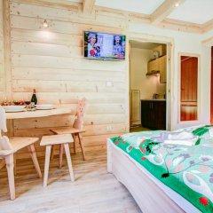 Отель Willa Vera Польша, Закопане - отзывы, цены и фото номеров - забронировать отель Willa Vera онлайн удобства в номере