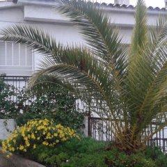 Отель Hostal Los Pinares Испания, Льорет-де-Мар - отзывы, цены и фото номеров - забронировать отель Hostal Los Pinares онлайн фото 2