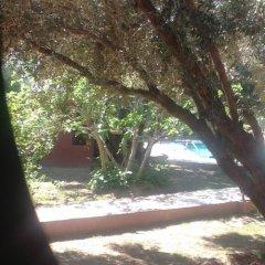 Отель Riad and Villa Emy Les Une Nuits Марокко, Марракеш - отзывы, цены и фото номеров - забронировать отель Riad and Villa Emy Les Une Nuits онлайн приотельная территория
