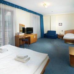 Hotel Ruze Карловы Вары комната для гостей фото 5