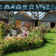 Отель Happy Nomads Yurt Camp Кыргызстан, Каракол - отзывы, цены и фото номеров - забронировать отель Happy Nomads Yurt Camp онлайн фото 18