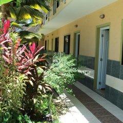Отель Aparta Hotel Bruno Доминикана, Бока Чика - отзывы, цены и фото номеров - забронировать отель Aparta Hotel Bruno онлайн фото 2