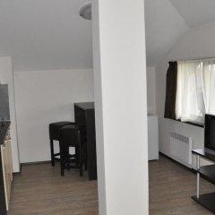 Отель Alpine Lodge Hotel Болгария, Банско - отзывы, цены и фото номеров - забронировать отель Alpine Lodge Hotel онлайн удобства в номере фото 2