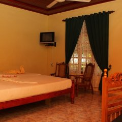 Wila Safari Hotel 3* Номер Делюкс с различными типами кроватей фото 4