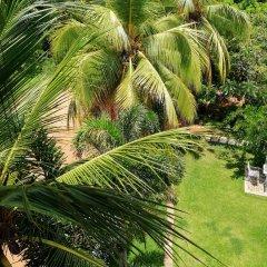 Отель Rajarata Lodge Шри-Ланка, Анурадхапура - отзывы, цены и фото номеров - забронировать отель Rajarata Lodge онлайн фото 14