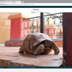 Отель Riad Verus Марокко, Фес - отзывы, цены и фото номеров - забронировать отель Riad Verus онлайн фото 2