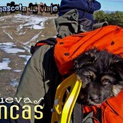 Отель Cuevas Blancas спортивное сооружение