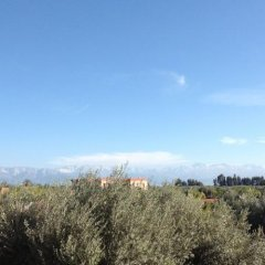 Отель Riad and Villa Emy Les Une Nuits Марокко, Марракеш - отзывы, цены и фото номеров - забронировать отель Riad and Villa Emy Les Une Nuits онлайн фото 5