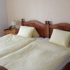 Hotel Alpina комната для гостей фото 3
