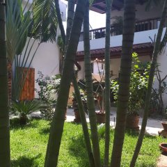 Отель Casa Luz de Luna Мексика, Сиуатанехо - отзывы, цены и фото номеров - забронировать отель Casa Luz de Luna онлайн фото 10
