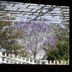Отель Villa 288 Далат балкон