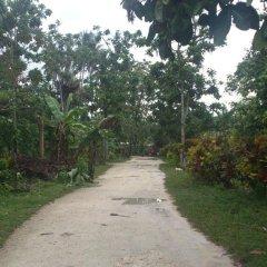 Ravihina Home Stay in Munda, Solomon Islands from 385$, photos, reviews - zenhotels.com photo 4