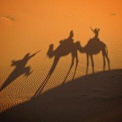 Отель Ali & Sara's Desert Palace Марокко, Мерзуга - отзывы, цены и фото номеров - забронировать отель Ali & Sara's Desert Palace онлайн приотельная территория фото 2