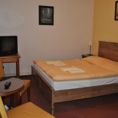 Hotel Svornost 3* Стандартный номер с двуспальной кроватью фото 18