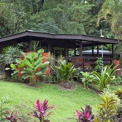Отель Chachagua Rainforest Ecolodge фото 21