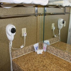 Отель Crystal Inn Suites & Spas 2* Стандартный номер с различными типами кроватей фото 15