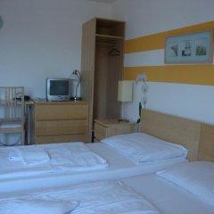 Отель Lenas Donau 3* Стандартный номер с различными типами кроватей фото 5