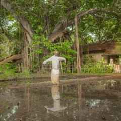Отель Sigiriya Village фото 17