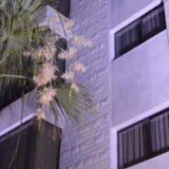Отель Renad Hotel Иордания, Амман - отзывы, цены и фото номеров - забронировать отель Renad Hotel онлайн балкон