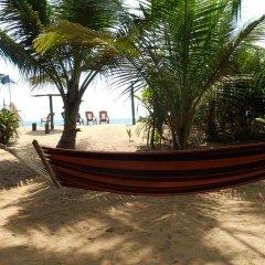 Отель Jasmin Garden Шри-Ланка, Пляж Golden Mile - отзывы, цены и фото номеров - забронировать отель Jasmin Garden онлайн пляж фото 2