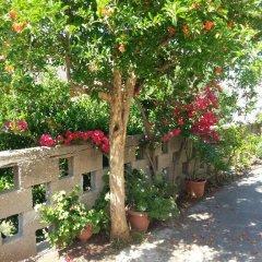 Отель Pizania Греция, Калимнос - отзывы, цены и фото номеров - забронировать отель Pizania онлайн фото 11