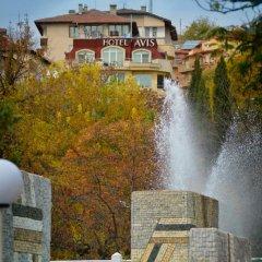 Hotel Avis фото 4