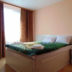 Мини-отель Мираж Стандартный номер с двуспальной кроватью фото 27