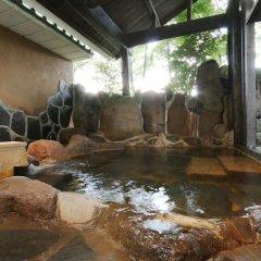 Отель Tabinoyado Asonoyu Минамиогуни бассейн фото 3
