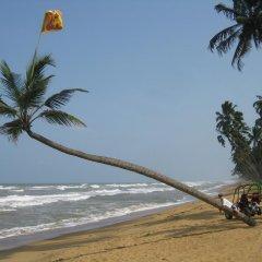 Отель Palm Beach Villa Шри-Ланка, Ваддува - отзывы, цены и фото номеров - забронировать отель Palm Beach Villa онлайн пляж фото 2