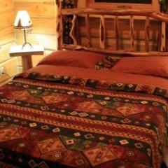 Отель Mica Mountain Lodge & Log Cabins комната для гостей фото 4