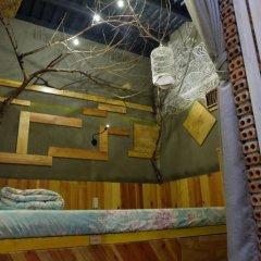 Gaia Hostel Номер категории Эконом фото 2