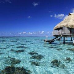 Отель Hilton Moorea Lagoon Resort and Spa 5* Бунгало Премиум с различными типами кроватей