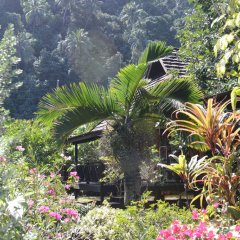 Отель Hitimoana Villa Tahiti 3* Бунгало с различными типами кроватей фото 4