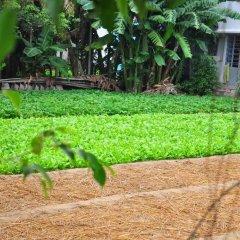 Гостевой Дом Petunia Garden Homestay фото 9